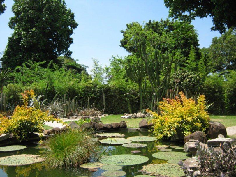 حدائق ريو دى جانيرو