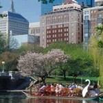 5 أنشطة مجانية ممتعة للأطفال في ولاية بوسطن