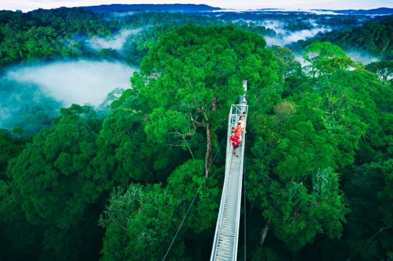 حديقة أولو تيمبورونغ الوطنية