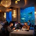 افضل مطاعم دبي التي يمكنك زيارتها وتذوق اشهى الأكلات فيها