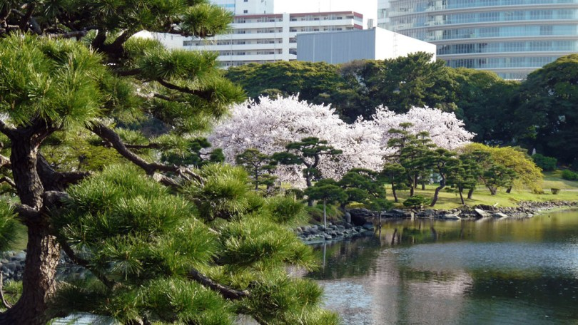 الحدائق في طوكيو