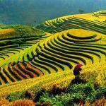 السياحة في سابا فيتنام وأجمل الأنشطة السياحية التي يمكنك الاستمتاع بها هناك