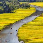صور فيتنام .. طبيعة رائعة وأماكن ساحرة