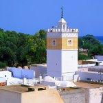 السياحة في الحمامات تونس وأجمل الأماكن السياحية هناك
