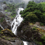 السياحة في غوا الهند وأفضل 6 أماكن للزيارة