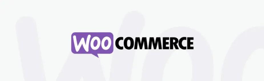 9 – Woocommerce أهم إضافات ووردبريس