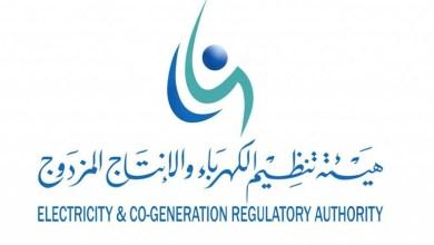 Photo of هيئة تنظيم الكهرباء والإنتاج المزدوج تعلن عن وظيفة (خبير تقنية معلومات)
