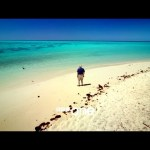 Great Barrier Reef with David Attenborough: Trailer – BBC One