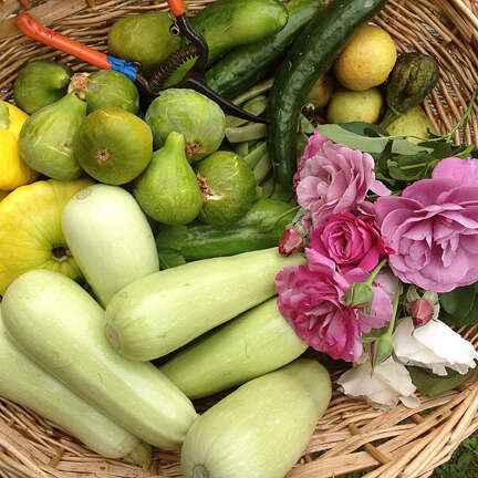 Mediterranean Cooking from the Garden with Linda Dalal Sawaya: 7 ways with summer squash—kousa