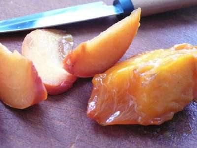 Mediterranean Cooking from the Garden with Linda Dalal Sawaya—Persimmon: a Winter Fruit of the Gods