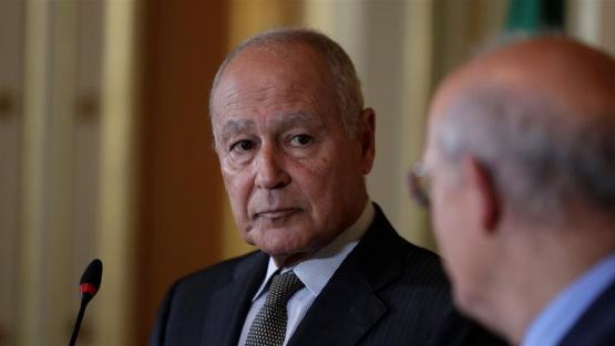 Gulf Crisis not on Arab Summit Agenda: Qatar