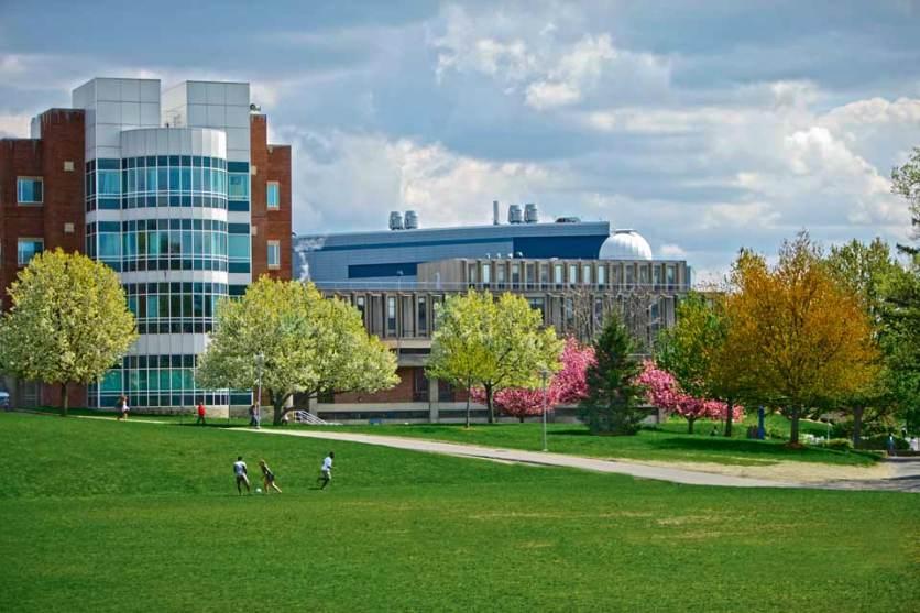 Middle East Studies, Brandeis University