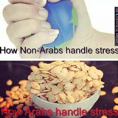 What's is it Like to Grow Up as an Arab?