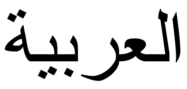 A Beginner's Guide to Arab Terminology