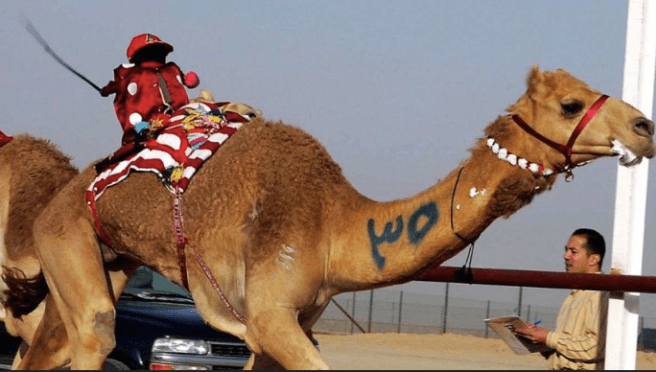 10 Facts You Didn't Know About the Arab World