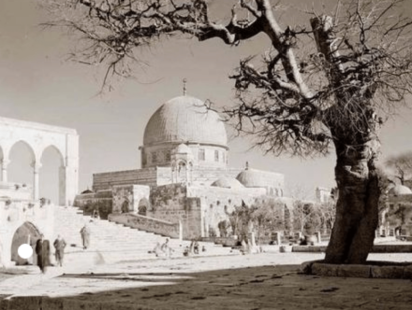 A Picture is Worth a Thousand Words: Palestine Before 1948