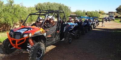 Marrakech Buggy Drive in the Palm Groves- 100 % Live Tour