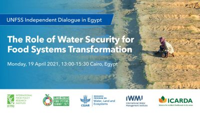 """UNFSS Independent Dialogue in Egypt: """"The Role of Water Security for Food Systems Transformation"""