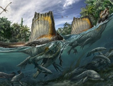 River of Giants: vertebrate palaeontology in Morocco