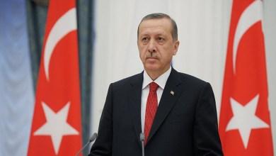 أردوغان: سنمنح الجنسية التركية للسوريين لهذا السبب 5
