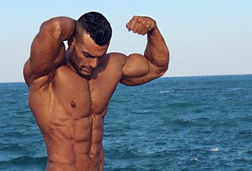 arabe muscle 123