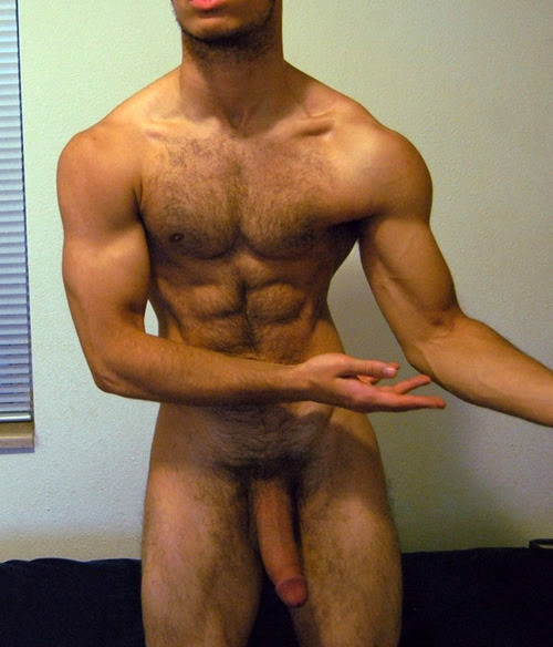 arabe-muscle-00018