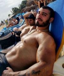 arabe muscle 00024