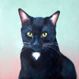Roxy Cat