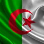شات الجزائر الكتابي , دردشة جزائرية ممتعة