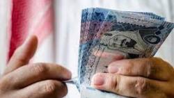 فكرة مشروع مربح في السعودية