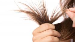 كيفية ازالة التقصف من الشعر بسرعه