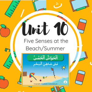 Unit 10 - Beach Summer theme for kids in Arabic printable book worksheets flashcards-five-senses