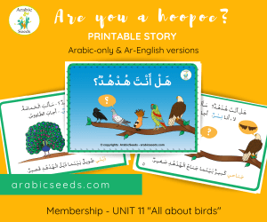 Are you a hoopoe hudhud Arabic printable story for kids - Arabic Seeds - Birds theme unit
