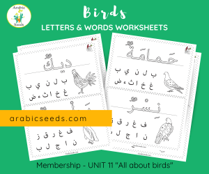 Arabic Birds Writing Worksheets - words letter recognition - Arabic Seeds printable for kids