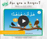 Arabic video Are you a hoopoe hudhud - story for kids - Arabic Seeds - Birds theme unit-2