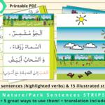 Park-Arabic-Sentences-Strips-by-Arabic-Seeds
