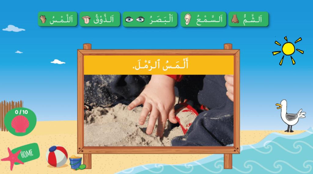 Arabic Five Senses at the Beach Arabic Game