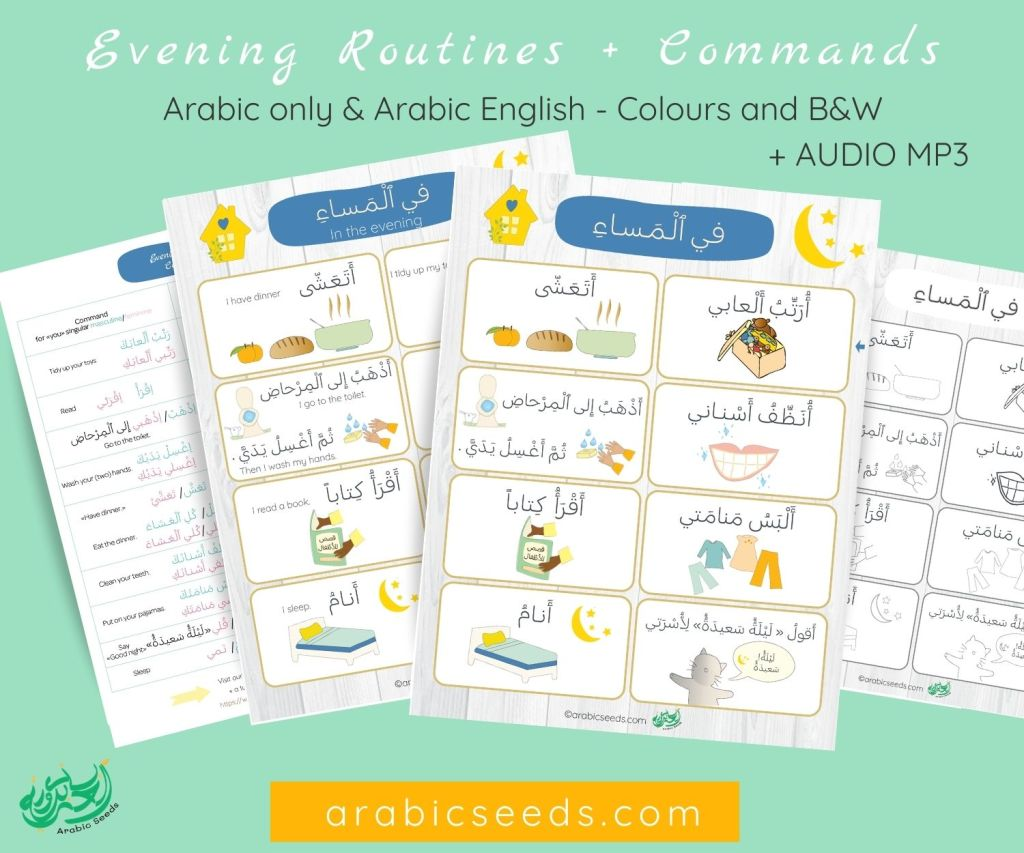 Arabic Evening Routines printable flashcards poster and commands - Arabic only & Arabic English - Arabic Seeds