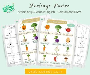 Arabic Feelings Emotions Printable Poster - Arabic Seeds
