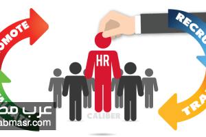 ادارة الموارد البشرية ودورها فى أى مؤسسة أو منظمة | شبكة عرب مصر