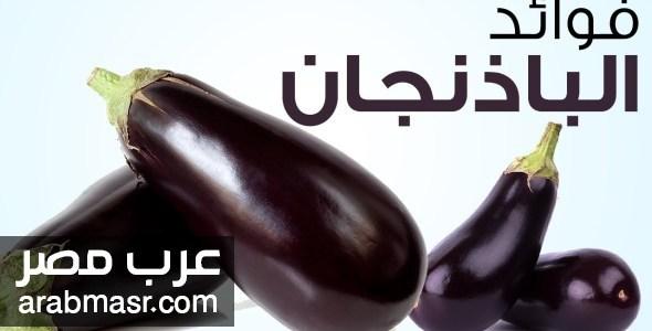 فوائد الباذنجان للجسم 5 فوائد مهمة وبعض النصائح لصحة افضل | شبكة عرب مصر
