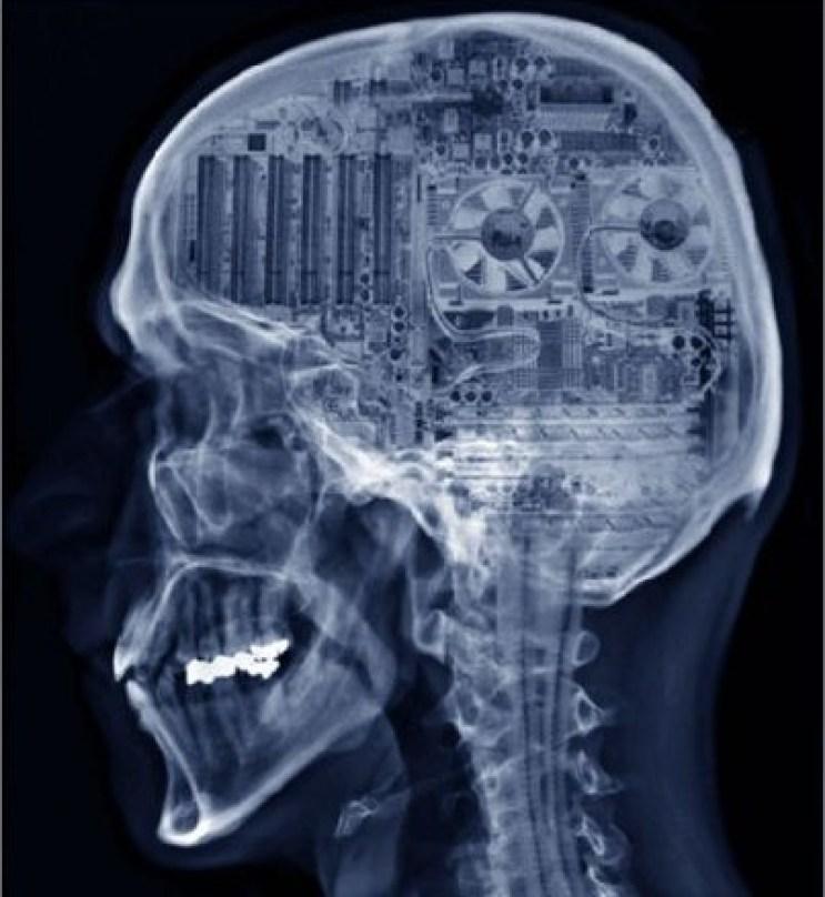 الدماغ كحاسوب، صورة ترسيمية