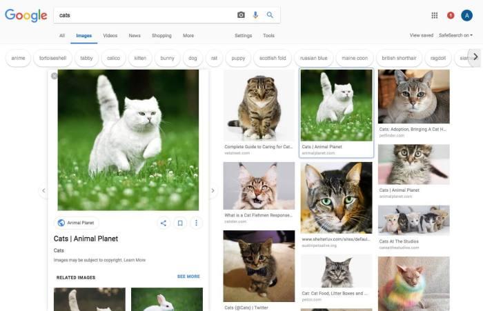 Google Yeni Görsel Arama Tasarımını Test Ediyor