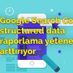 Google Search Console structured data raporlama