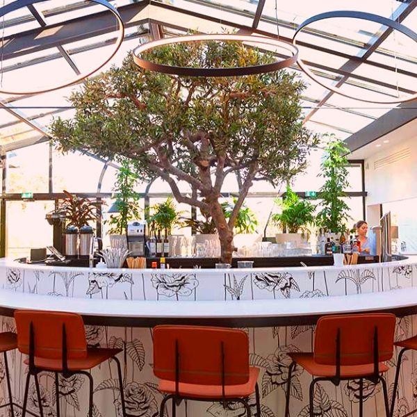 Comptoir central très végétal avec un arbre au centre