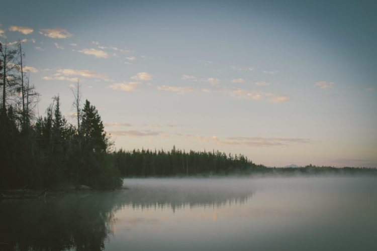 Un día cualquiera en el lago: Cuentos breves