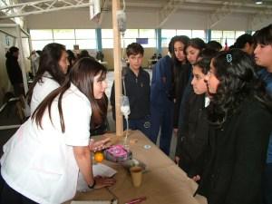 Feria Lonquimay 5
