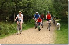 Cycling-Roadford-1