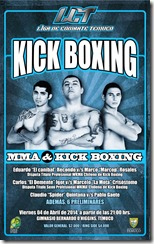 TELA KICK BOXING 6.4x4mts