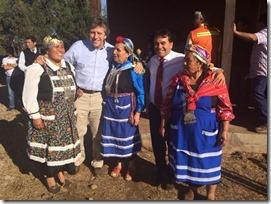 espina con comunidad mapuche